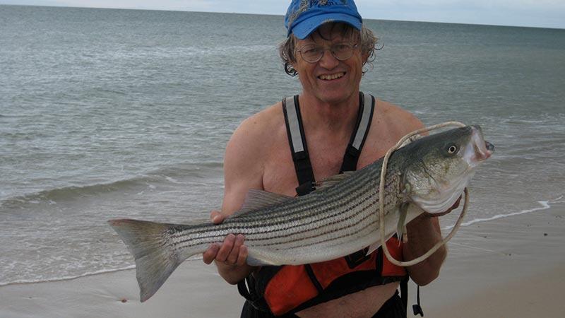 Two fine striper treatments for martha 39 s vineyard fish for Martha s vineyard fishing charters