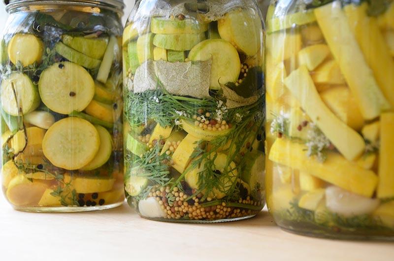 Pickled Yellow Squash Recipes — Dishmaps