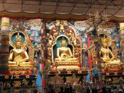 glimpse-tibet