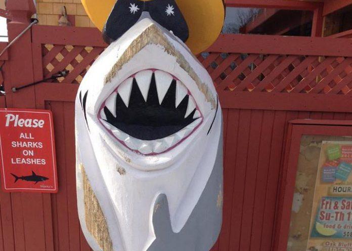 sharky vandals