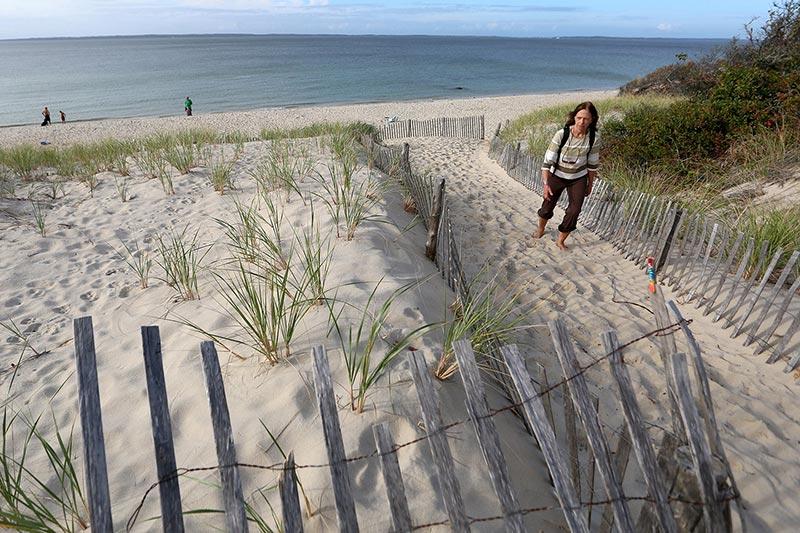 Lambert S Cove Beach The Best Beaches In World