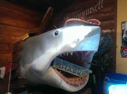 Bruce safely ensconced in his Edgartown perch at Sharky's, before the move. – Courtesy Sharky's