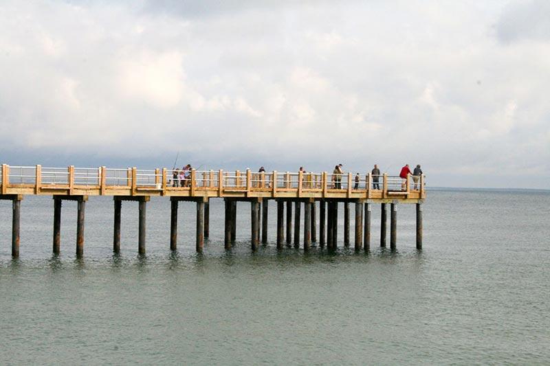 Oak bluffs pier fishermen get a helpful tool martha 39 s for Pier fishing net