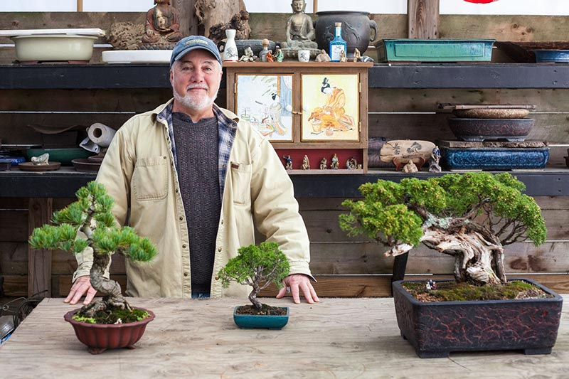 Ernie And The Wee Trees At Donaroma S The Martha S Vineyard Times