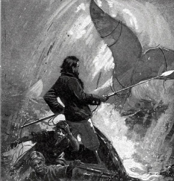 moby dick summer reading Suddenly the prospect of reading moby-dick with robinson felt like a frivolous privilege i had no business indulging it's hard to get lost in great books, let alone write with the necessary abandon, when you're not sure how you're going to buy groceries.
