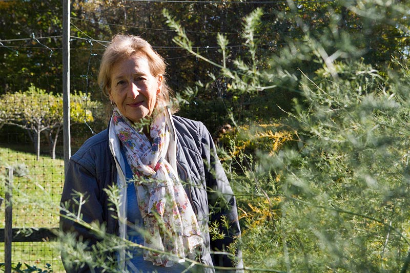 Carol S Garden: Gardens Of Love: Carol Brush