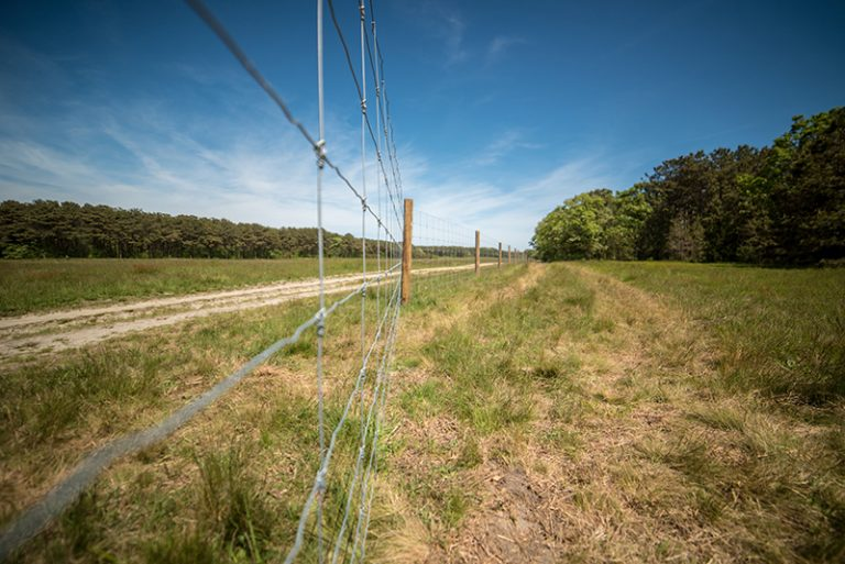 Land Bank puts up fence at Tradewinds