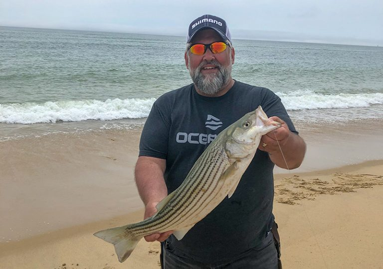 Fishing Report: Stripers moving in relentlessly