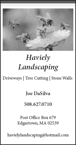 bd_Haviely_landscaping