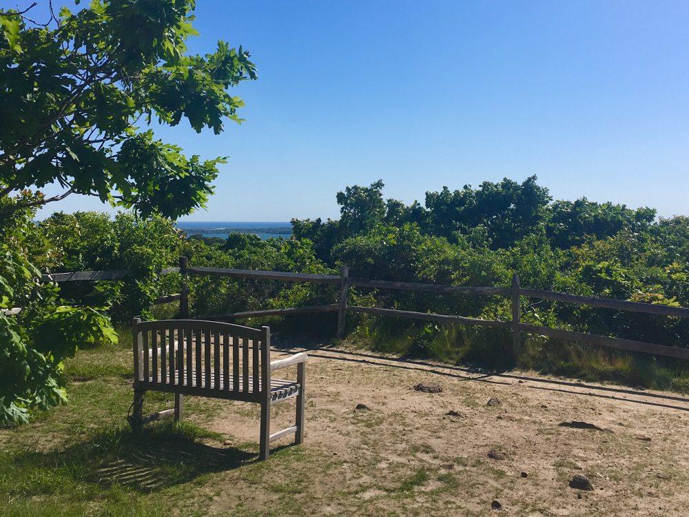Menemsha Hills Reservation -Nancy Tutko